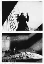 NOSFERATU Herzog ADJANI Kinski Remake Murnau Fantôme Rats 2 Photos 1979