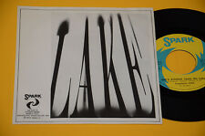 """LAKE 7"""" 45 KING OF THE ROCK'N'ROLL PART ORIG ITALY PROG 1973 EX++ ! COLLEZIONIST"""