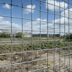 """Galvanised 39""""48"""" 15/30M Welded Cage Wild Fence In/Out Poultry Chicken Wire Mesh"""