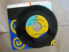 Pete Anderson and the Babylonian Cowboys 45 Record Venice Skyline Rag