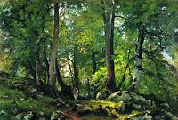 Oil painting Shishkin Ivan Ivanovich Russia artist Beech Forest in Switzerland