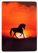 SWAP CARD. HORSE AT SUNSET. FANTASY ART / PHOTOGRAPHY. WIDE. MINT. MODERN
