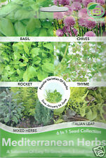 Mediterranean Herb Seeds 6x1 Basil/Chives/Rocket/Thyme/Mix Herbs/Salad Leaf 2020