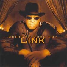 Link: Whatcha Gone Do? PROMO w/ Artwork MUSIC AUDIO CD Clean 59 Instrumental 4tk