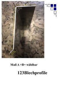 Ortgangblech Typ 1 Verkleidungsblech Ortgang Dachabschluss Ortgangwinkel 2m lang
