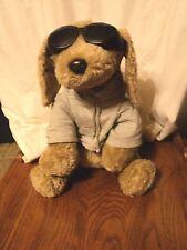 AE Performance Dog Goggles Gray Hoodie Plush