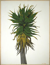 Louis De Mayo, Yucca, Original Painting on Canvas Art Artwork SUBMIT BEST OFFER!