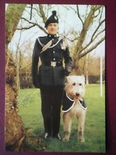 POSTCARD MASCOTS OF THE ARMY - ROYAL IRISH REGIMENT - BRIAN BORU V