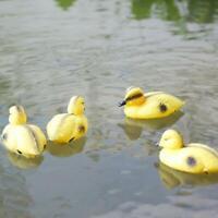 Lebensecht Enten Fischteich Ornament Kunststoff Mallard Dekor für Garten
