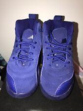 Nike Jordan Retro 12 Deep Royal Blue Size 11C