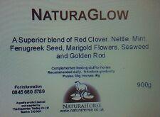 NaturaGlow, coat, skin, condition 2.7kg (x3 900g packs)