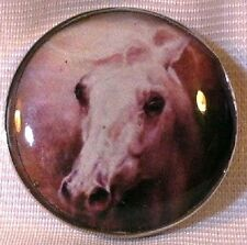 Fine Art Horse Snap Dramatic Wild Horse 18-20Mm Some With Bubbles! Horse Gift!