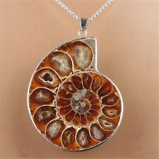 Nautilus Ammonite Fossil Shell Necklace Natural Gemstone Madagascar Pendant