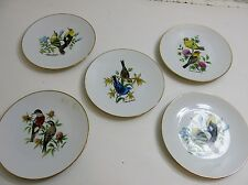 LOT OF 5 VINTAGE BAREUTHER WALDSASSEN BAVARIA GERMANY BIRD PLATES 8""