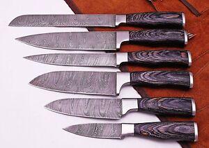 Eye Catching Custom Made Damascus Steel Professional Kitchen Knife set -DB-049-6