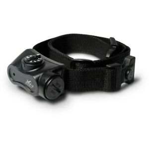 D.T. Systems Bark BOSS Dog Bark Control Collar Black