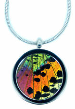 Real Handmade Butterfly Wing Pendant Necklace - Stainless Steel Pendant Necklace