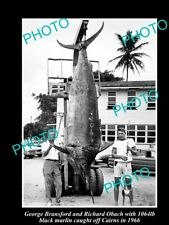 OLD LARGE GAME FISHING PHOTO OF 1000lb BLACK MARLIN CAUGHT OFF CAIRNS c1966
