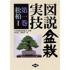 Japanese Bonsai Actual Technique Bk Vol. 1 Matsu(pine tree) 1994 used Very Good