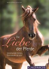 NANDA VAN GESTEL VAN DER SCHEL - DIE LIEBE DER PFERDE Cadmos Verlag - NEU -