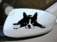 Cute Boston Terrier Dog Sticker Car Wing Mirror Vinyl Graphic Decal  X2