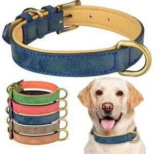 Adjustable Leather Dog Collar Metal Buckle Soft Padded Puppy Small Medium Large