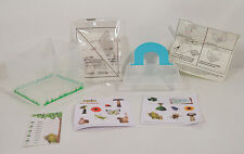 """RARE FOREIGN 2013 Viewing Bug or Plant 4"""" Habitat w/ Seed Pack McDonald's Epic"""
