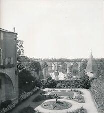 ALBI c. 1938 - 3 Photos  Jardins de l'Ancien Evêché  Le Tarn  - L 142