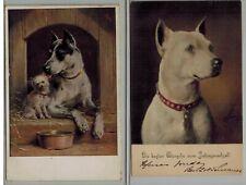 New listing Great Dane, C. Reichert, Antique Dog Postcard Lot of 2