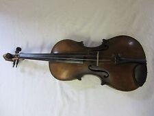 eine ältere 4/4 Geige Stainer mit Löwenkopf Nr 2281