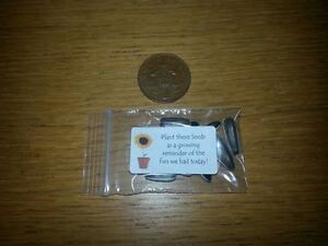 10 Birthday Generic Sunflower Seed Favours - 10p party bag fillers Unisex