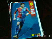 crystal palace ward colour A4 picture CPFC