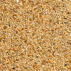 Budgie+Food%2C+Perfect+mix+of+Red+and+White+Millet+with+Canary+Seed%2C+Budgie+Seed