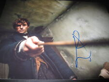 EDDIE REDMAYNE SIGNED AUTOGRAPH 11x14 PHOTO FANTASTIC BEASTS ROWLING COA AUTO D