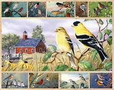 Jigsaw puzzle Animal Bird Songbirds 750 piece NEW Made in USA