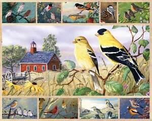 Jigsaw puzzle Animal Bird Songbirds 750 piece NEW Made in USA