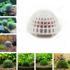 Marimo Moss Ball Filter Live Aquarium Aquatic Plants Decor  Fish Shrimp Tank Pet