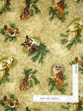 Owl Bird Perched On Pine Branch Cotton Fabric SPX Owls Of Wonder #24881 - Yard