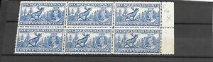 Newfoundland KGVI stamp 1937 Coronation block SG Variety 259b Reentry rt of Oval