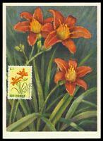 SAN MARINO MK 1972 FLORA BLUMEN TAGLILIE FLOWERS CARTE MAXIMUM CARD MC CM am55