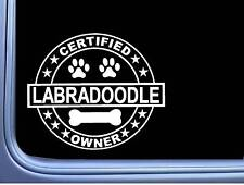"""Certified Labradoodle L310 Dog Sticker 6"""" decal"""