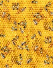 Fat Quarter Honey Bee on Honeycomb Cotton Quilting Fabric Elizabeth's Studio