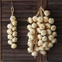 Hanging Foam Artificial Foam Garlic Onion Party Kitchen Decor Photography Props.