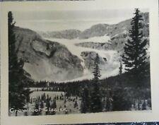 Crowfoot Glacier Banff Park Alberta Canada Vintage Black And White Photo