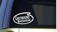 "Greyhound Inside *I274* 8"" wide Sticker decal dog dog racing muzzle whippet"