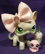 Littlest Pet Shop #125 Siamese Kitty Cat White Gray Green Dot Eyes Red Magnet