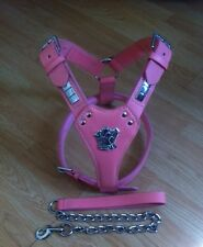 Pink Staffordshire Bull Terrier Stafff, Staffie,Leather Harness With Lead