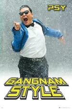 Gangnam Style: Psy Im Schnee - Maxi-Poster 61cm X 91.5cm New And Sealed