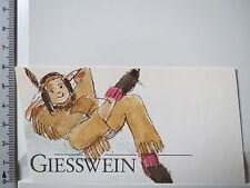 Aufkleber Sticker Giesswein - Schuhe und Bekleidung - Indianer (2634)
