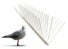 Seagull Spikes Wide - 1 Metre - 100 304 Stainless Steel Bird Deterrent Spike